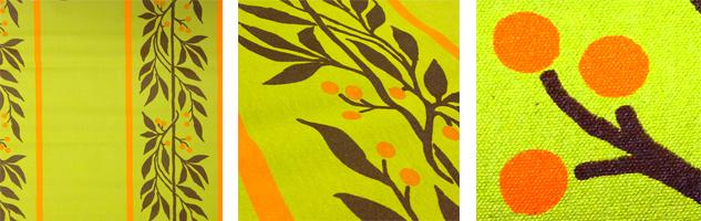 cairns-birdwing